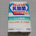 日清ヨーク ガンバル乳酸菌+ブドウ糖 ラムネ風味